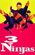 3 Ninjas - Jon Turteltaub