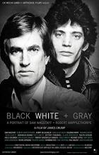 Black White + Gray: A Portrait of Sam Wagstaff and Robert Mapplethorpe - James Crump