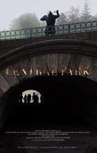 Central Park - Justin Reinsilber