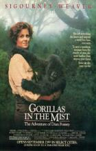 Gorillas in the Mist - Michael Apted