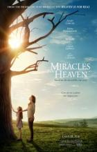 Miracles from Heaven - Patricia Riggen