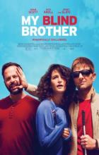 My Blind Brother - Sophie Goodhart