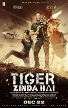 Tiger Zinda Hai - Ali Abbas Zafar
