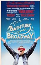 Bathtubs Over Broadway - Dava Whisenant
